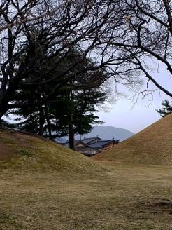Busan day 4 - Daereungwon Tumuli Park 11