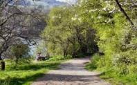 Famous Walk (bolton)
