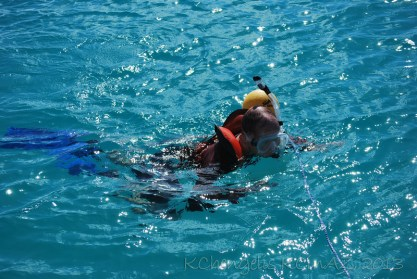 Snorkeling of the side of the boad