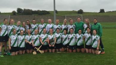 Tullaroan, Leinster intermediate club champions for 2015. Photo: Tullaroan Camogie/Facebook
