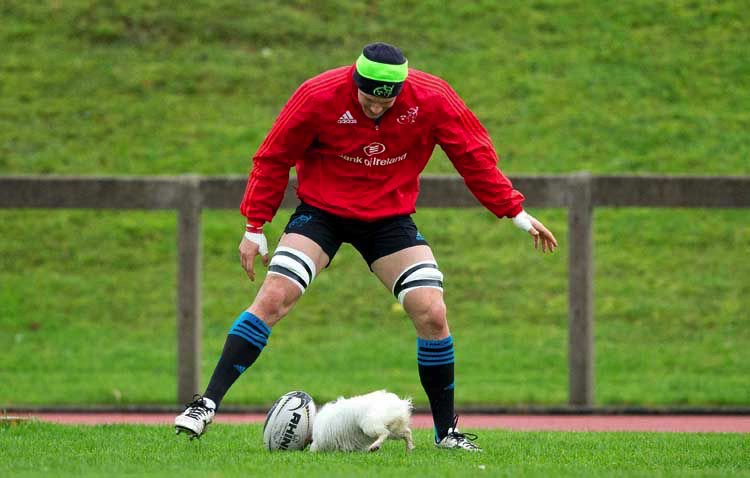Robin Copeland gets some help in training ahead of the Munster v Connacht Pro 12 on 28 November 2015. Photo: @kilkennycollege/Twitter