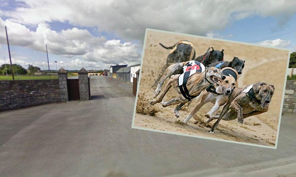 Greyhound racing at Kilkenny Greyhound Track, St. James' Park