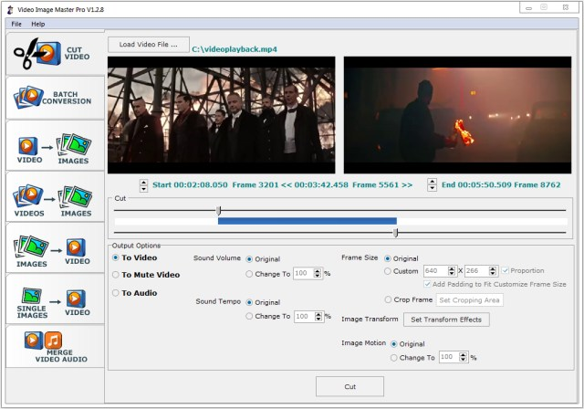 Video Image Master Pro Crack Serial Key