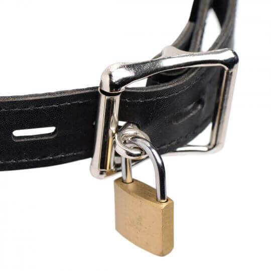 Silver locking buckle with lock