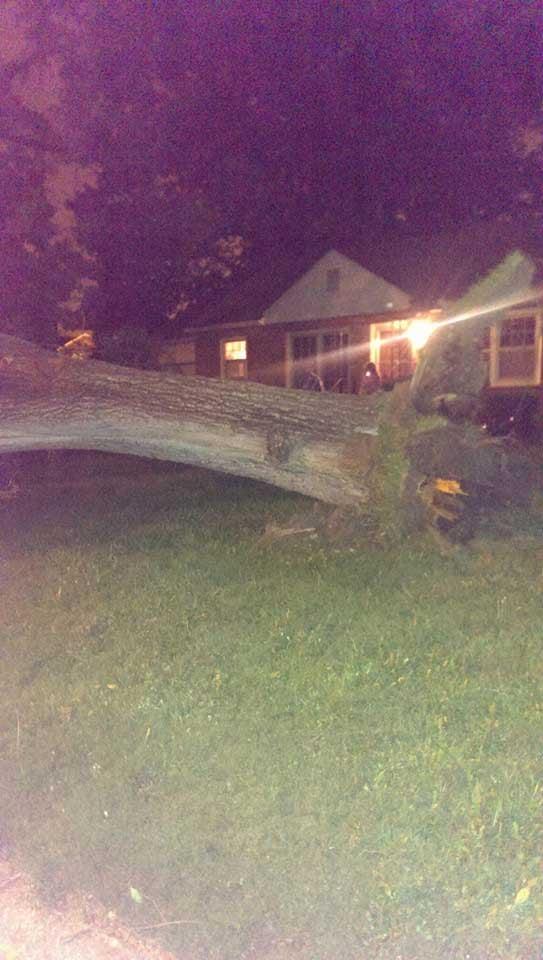 A tree is down in a yard in Sugar Creek.