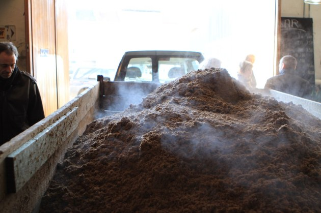Truck full of spent grain, still hot.