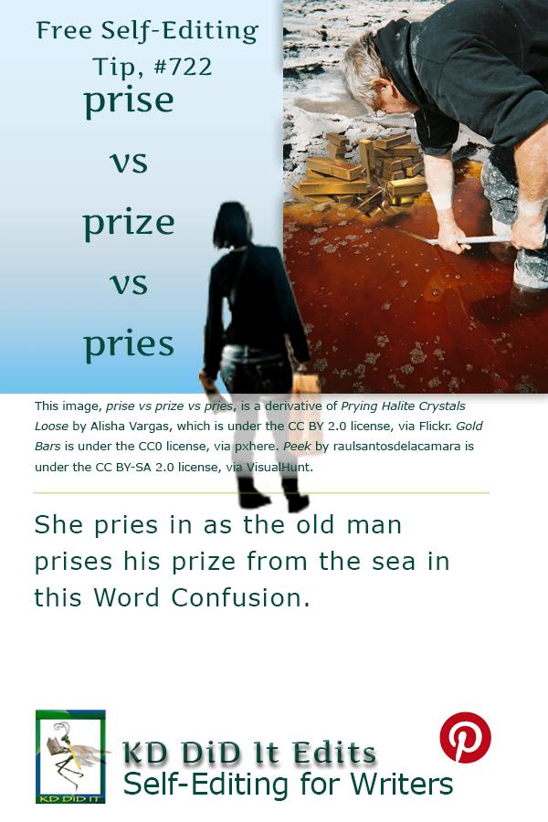 Pinterest pin for Prise vs Prize vs Pries