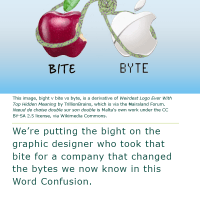 Word Confusion: Bite versus Byte