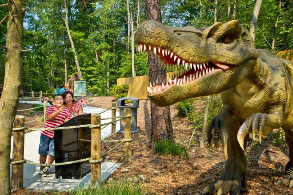 Dinosaur's Alive