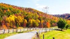 Back Road Randolph County WV