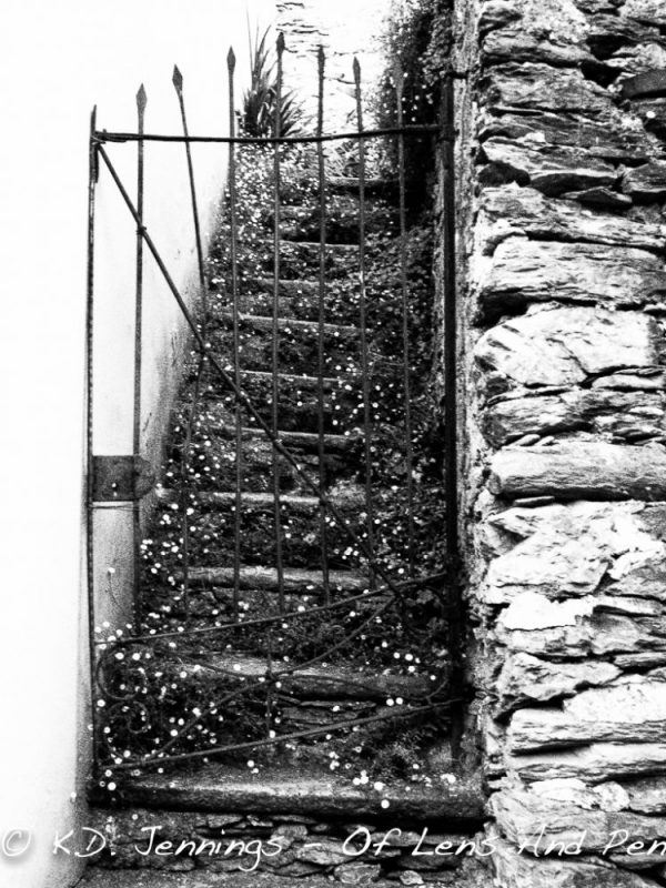 Piedmont - Italy - Black and White Photography