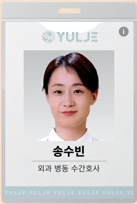 ソン・スビン(cast:キム・スジン)