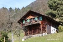 Rumah petani