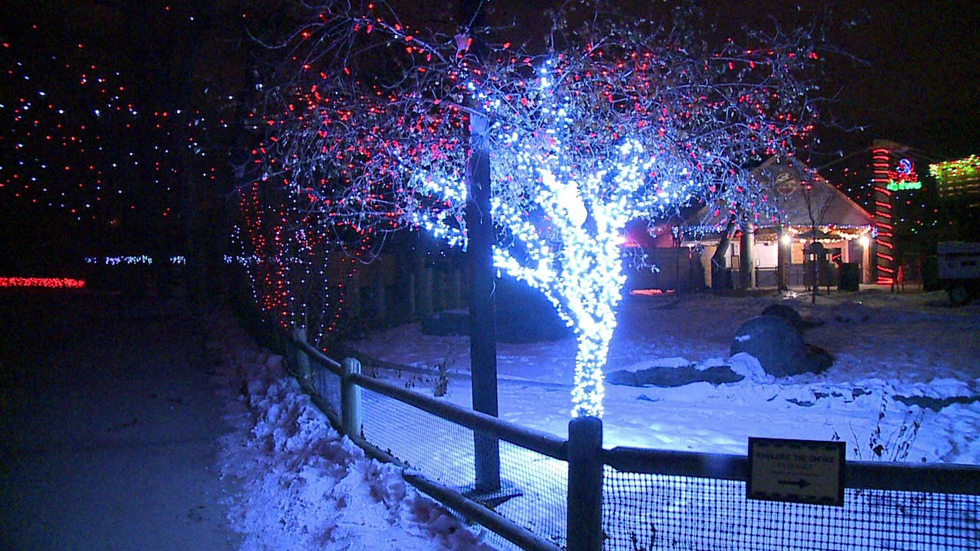 where outdoor christmas lighting