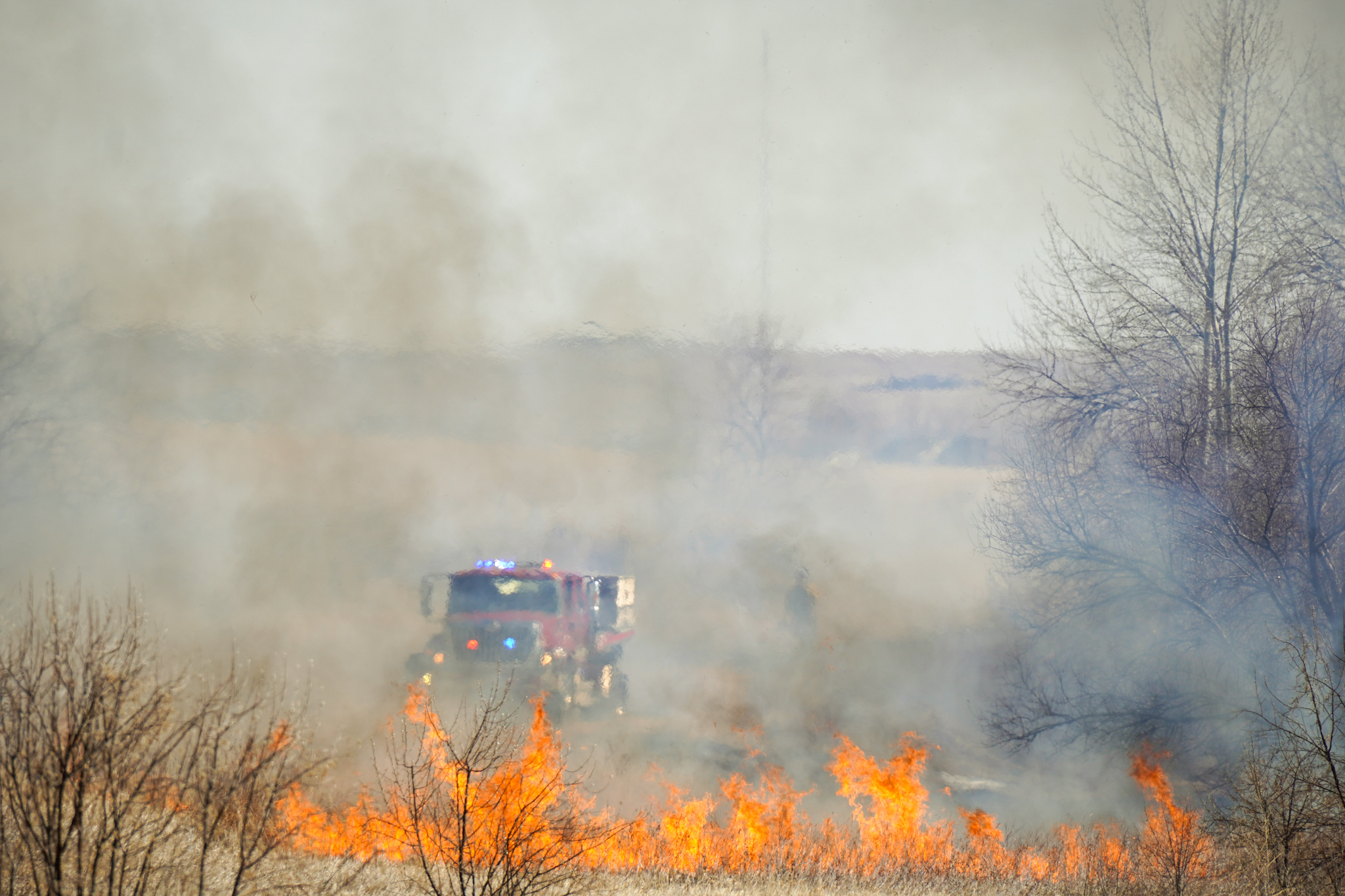 A grass fire burns in Larimer County on February 22, 2020.