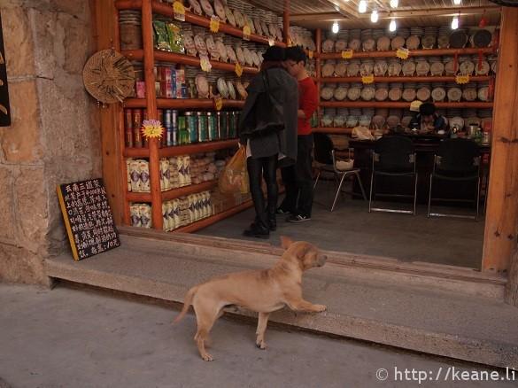 Dog enters shop in Shu He Ancient City in Lijiang