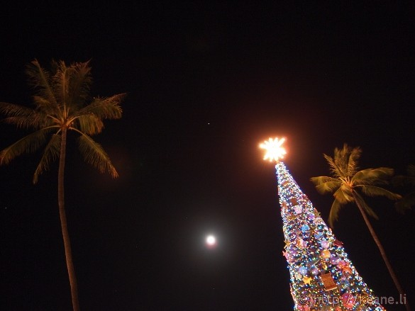 Honolulu City Lights - Christmas 2012 - Tree and Moon