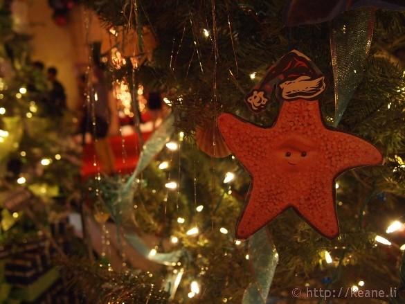 Honolulu City Lights - Christmas 2012 - Peach the Starfish