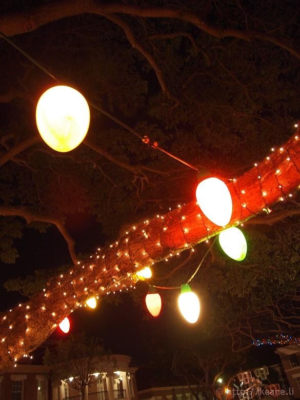 Honolulu City Lights - Christmas 2012 - Tree Bulbs