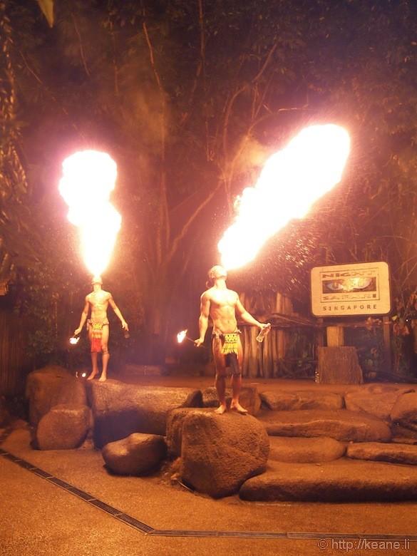 Singapore's Night Safari - Fire Dancers