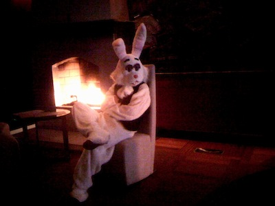White Rabbit at Mayes Oyster House