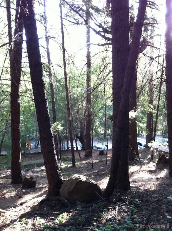 Walking Trail at Dhamma Manda Northern California Meditation Center
