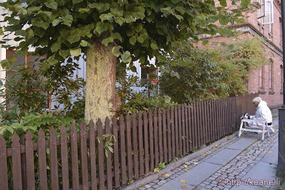 Woman Painting Fence in Gothenburg