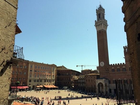 Main Piazza in Siena