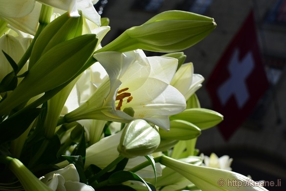 Flowers and Swiss Flag in Bern