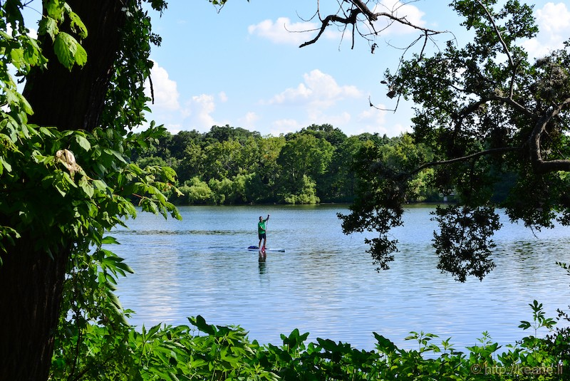 Stand Up Paddle Boarder in the Colorado River in Austin