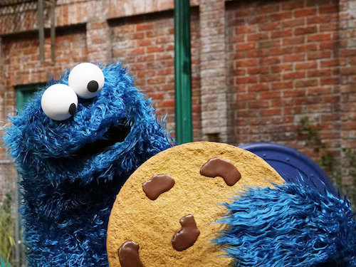 Mmm... cookie
