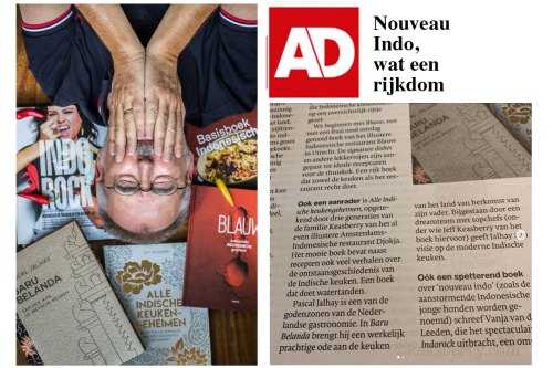 Book review in Dutch Newspaper