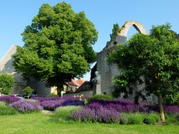 visby-garden-with-statue-and-ruin