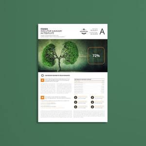 Fasma Executive Summary A4 Template
