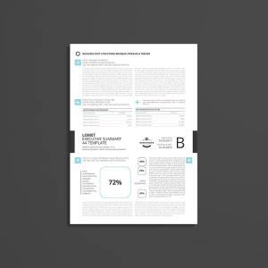 Lomet Executive Summary A4 Template