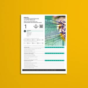 Provoli Customer Questionnaire US Letter Template
