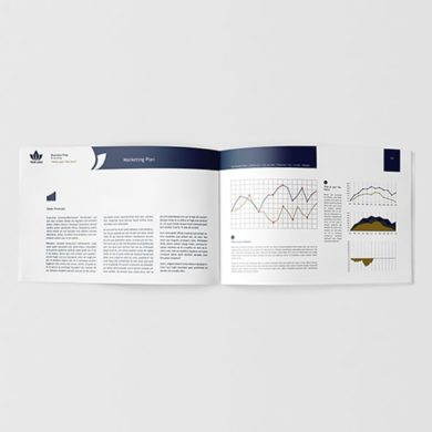Business Plan for Startups Template – kfea 11-min