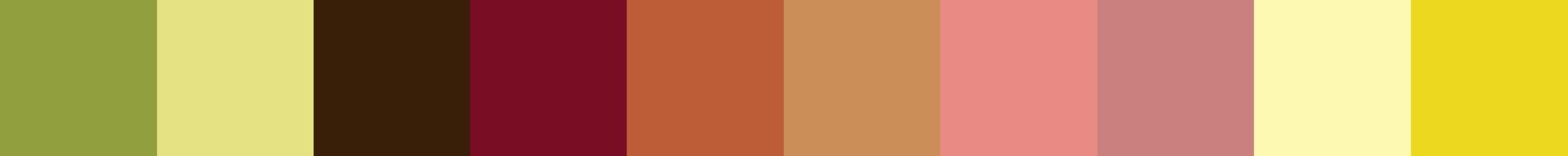 302 Fococou Color Palette