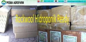 jual rockwool hidroponik