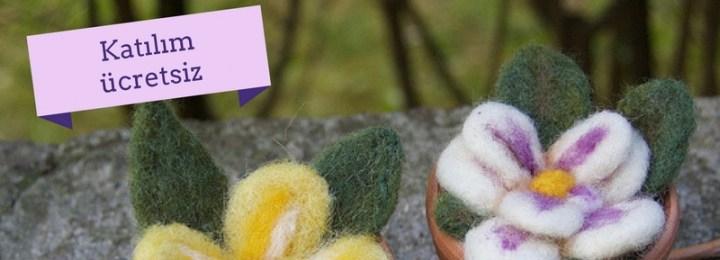 Canlı Workshop: Saksıda Çiçek