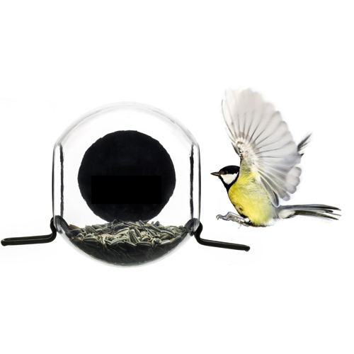 Birdfeeder with suction