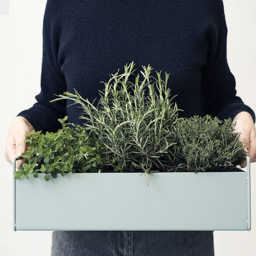 Plant box small light grey