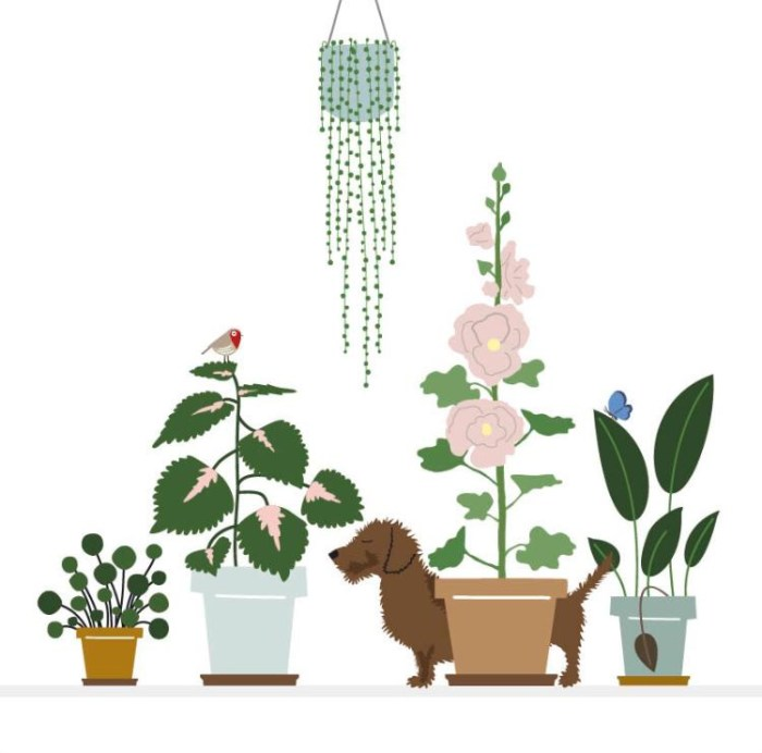 Gevouwen kaart Frits - planten