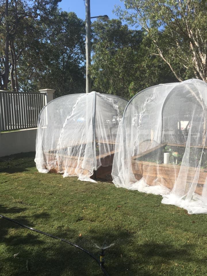 Kedron Scouts Community Garden Beds