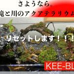 【必見】さよなら、滝と川のアクアテラリウム。次回作のレイアウト公表!