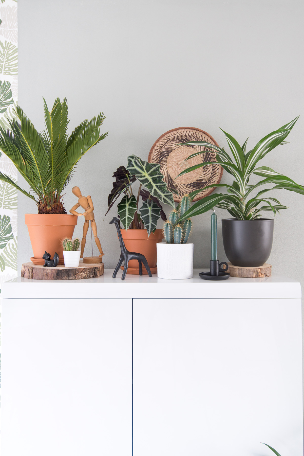 keeelly91blog urbanjungle intratuin planten groen in huis groenevingers interieur houseplant green woonkamer