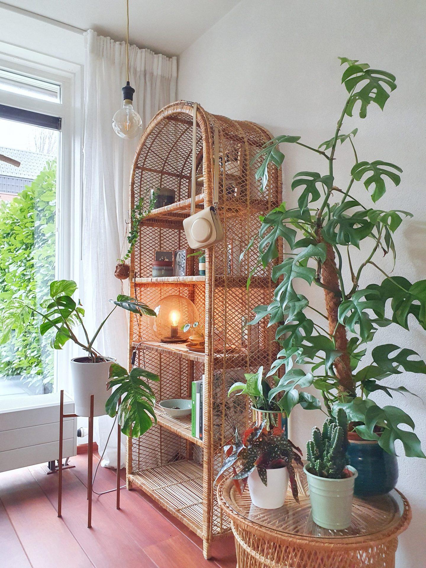 kringloopgelukjes dr.house_bykylie keeelly91blog marktplaats interieurview interview woonkamer bohemian rotan kast planten