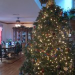Christmas Deco 2012_0127