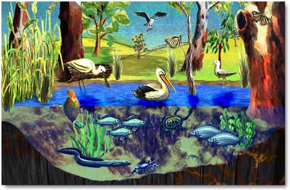Ecosystems Miss Griffin S 5th Grade