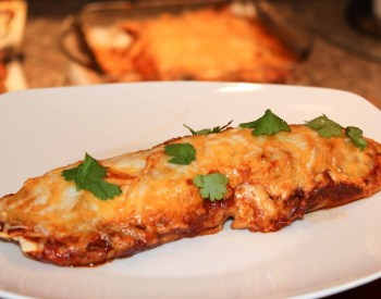 Spicy Enchiladas
